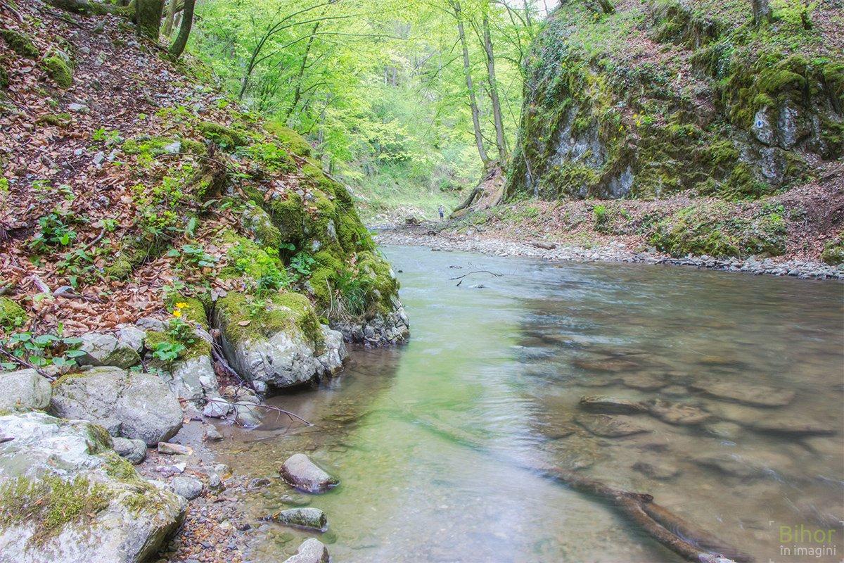 Cheile Lazuri – printre cele mai impresionante chei din Munții Pădurea Craiului
