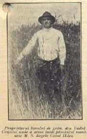 Dobo Mihai ( Dubau Mihai ) , taran din Vadu Crisului , proprietarul lanului de grau unde a aterizat avionul regelui Carol II