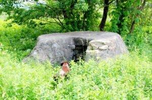 Fantana de la Cociodie , de unde s-a luat apa care i-a fost oferita regelui Carol al II lea la 6 iunie 1930 ( Foto : Teodor Pop , 3 iunie 2012 )