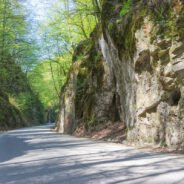 """Albioara Gorges ‐ """"passage"""" to the Pădurea Craiului Mountains"""