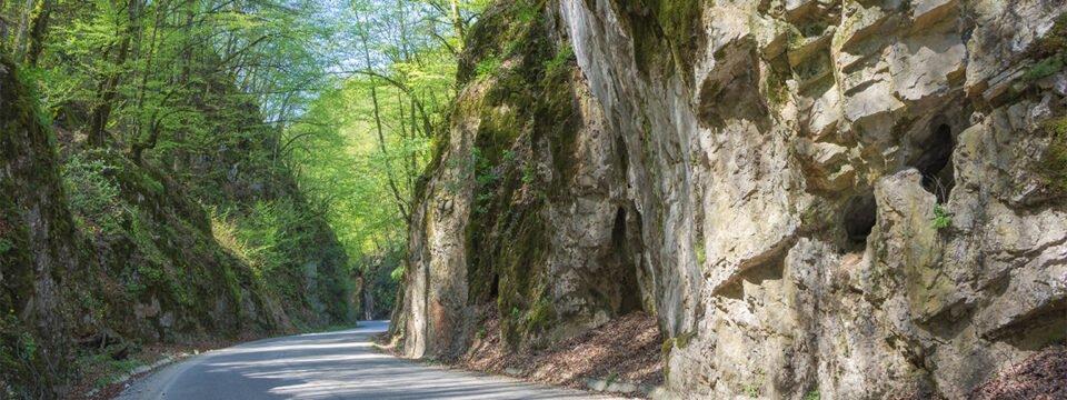 """Cheile Albioarei – """"poarta"""" de pătrundere în Munţii Pădurea Craiului"""