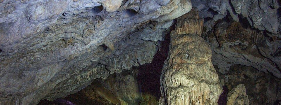 Peștera Vacii din Cheile Cuților