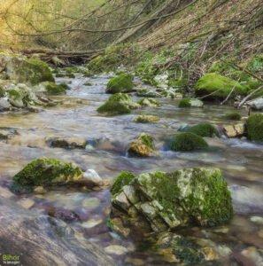 Pe Valea Sighistel