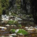 Pe Valea Sighistelului