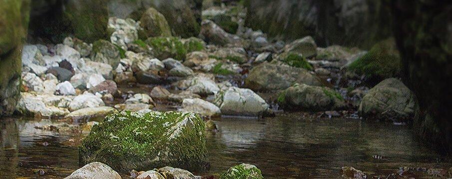 Fragmente de pe Valea Sighiștelului
