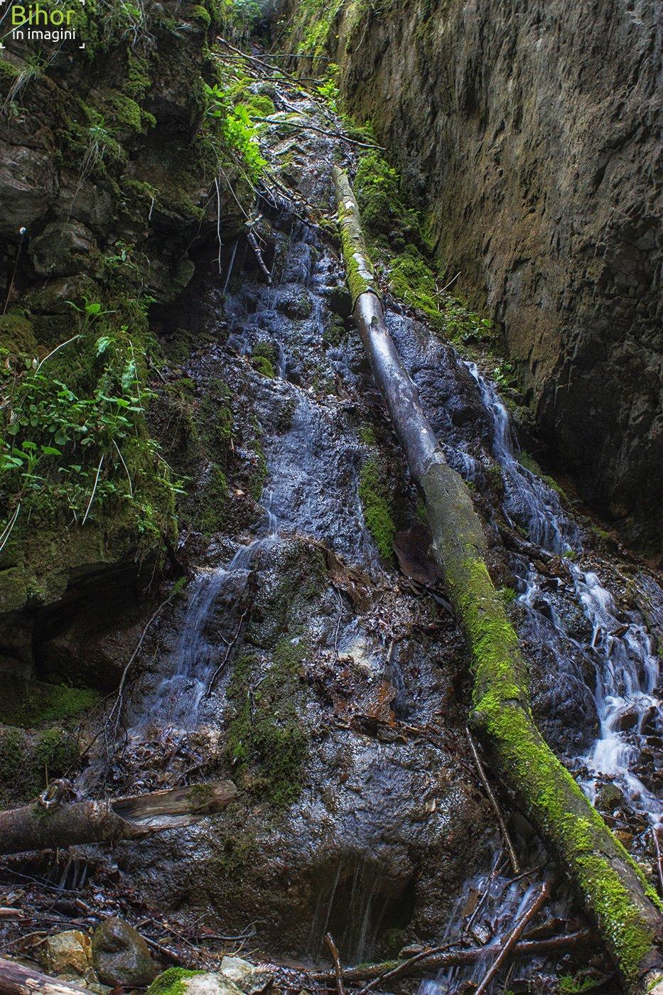 Pe Valea Sighiștel