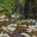 Valea Sighistelului01