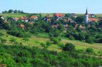 Săldăbagiu de Munte village