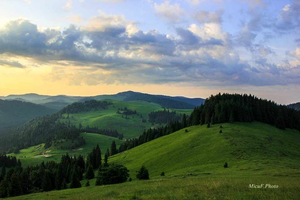 Morning view in Apuseni Mountains