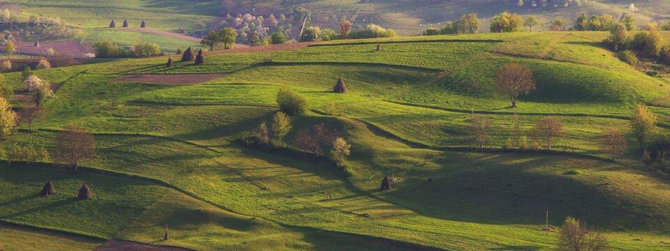 Spring in Roșia village