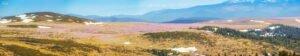 Vedere panoramica de pe Buteasa