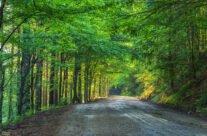 Drumul Lacul Leșu – Stâna de Vale