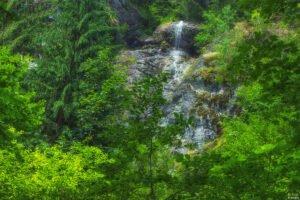 Cascada Hotvole sau Cascada Laia Mare01