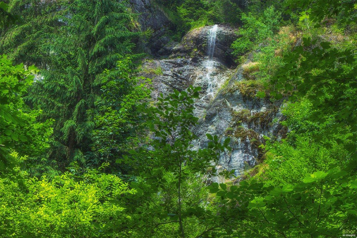 Cascada Miss sau Cascada Laia Mare