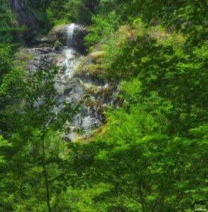 Cascada Hotvole sau Cascada Laia Mare02