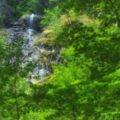 Cascada Hotvole sau Cascada Laia Mare04