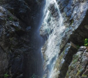 Cascada Miss04