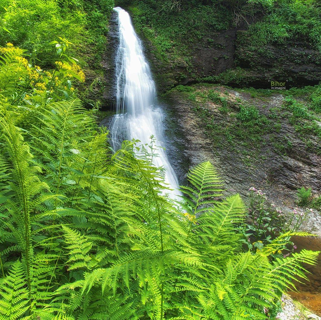 Săritoarea Ieduțului waterfall