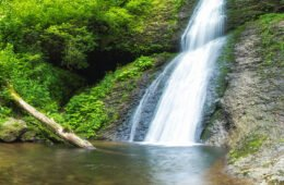 Săritoarea Ieduţului Waterfall: a thunderous roar among the ferns