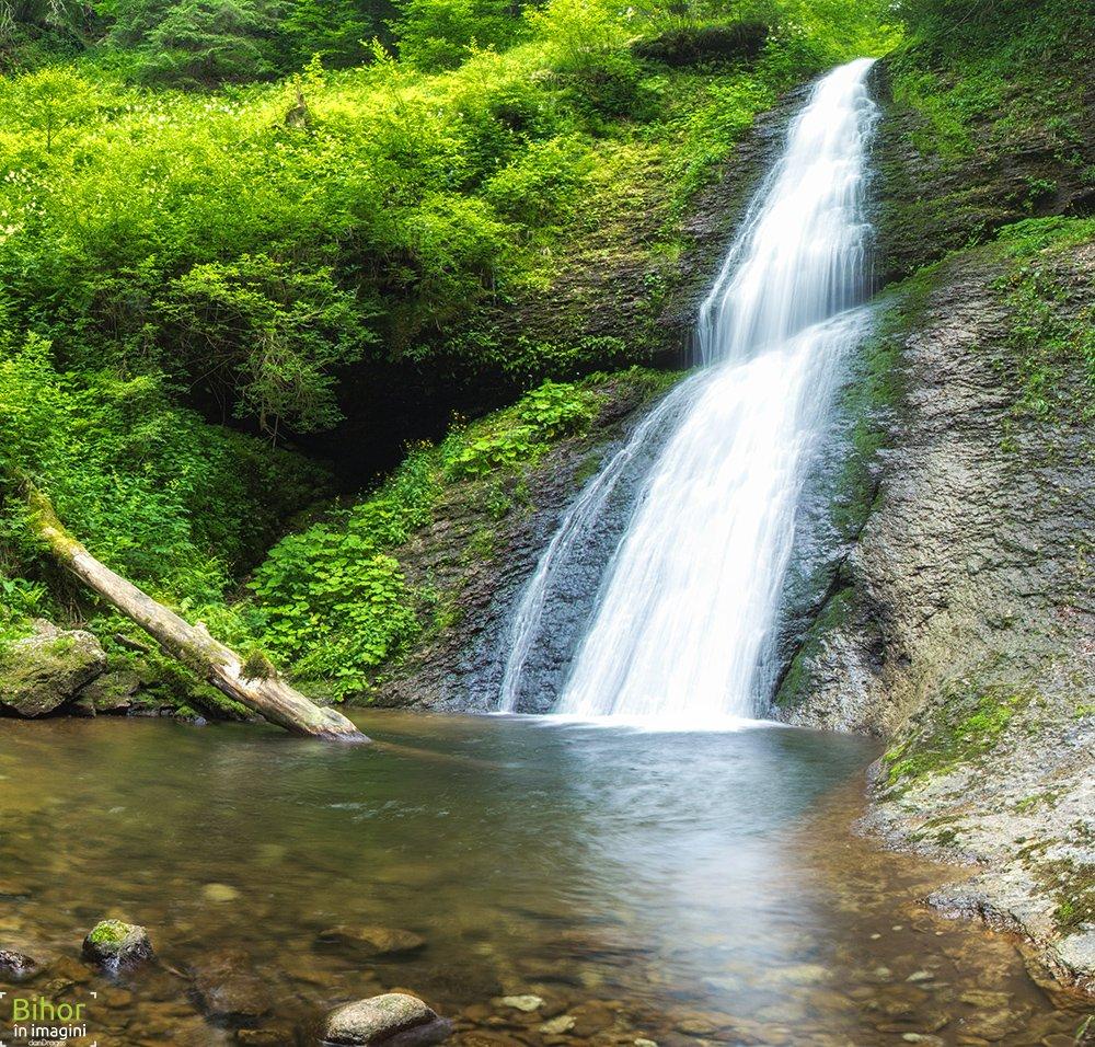 Cascada Săritoarea Ieduţului: un vuiet asurzitor între ferigi