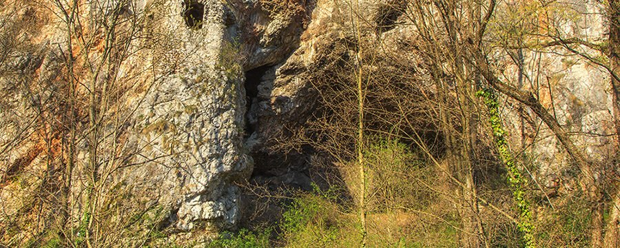 Casa Zmeului cave