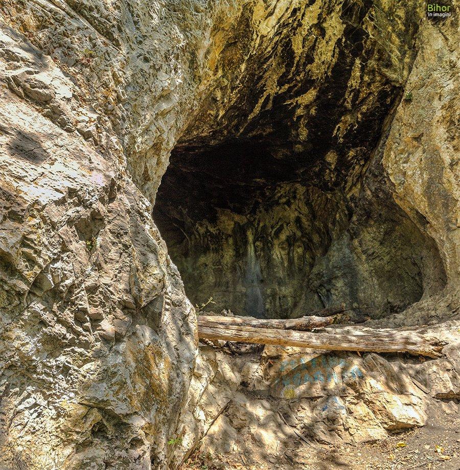 Peștera Fugarilor
