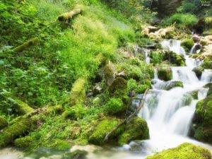 Urcare spre Peştera cu Apă din Valea Leşului