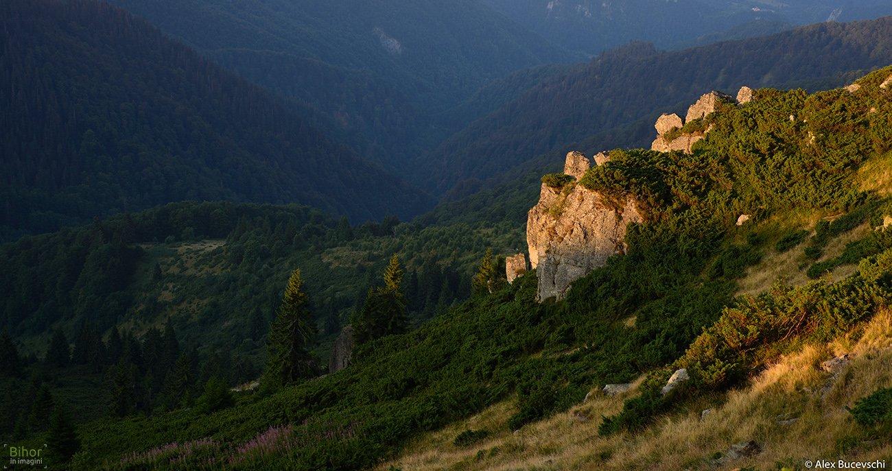 Sunset on the Carligate ridge
