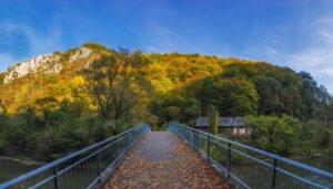Podul spre Peștera și Cascada Vadu Crișului