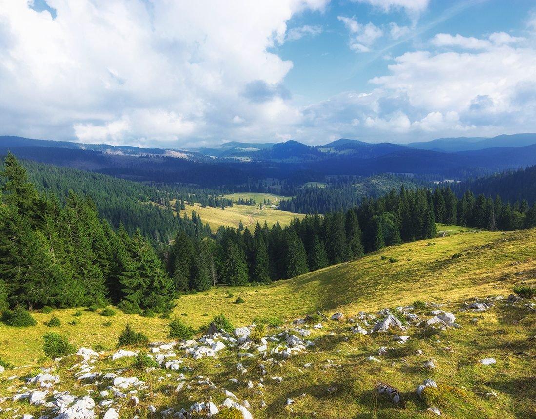 View from Vărășoaia peak