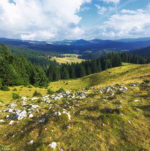Vedere de pe Vf Vărășoaia spre Poaina Varasoaia