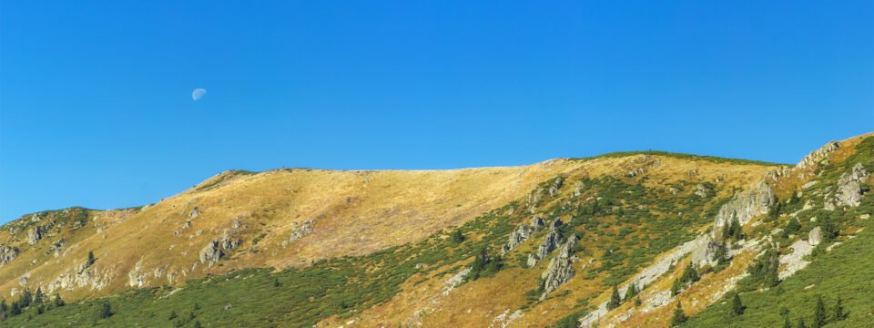 Rezervația naturală Vârful Cârligaţi