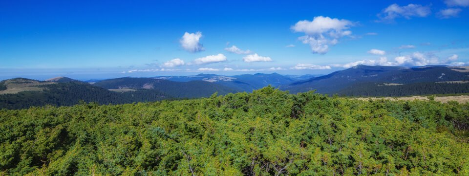 Vedere panoramica de pe Vârful Bohodei