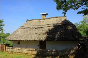 Casa Tradiţională servitor01