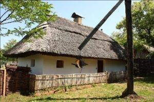 Casa Tradiţională servitor03