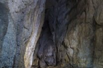 Peștera Moanei