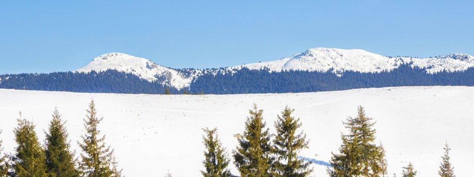Peisaj de iarnă cu vedere spre Vf Buteasa