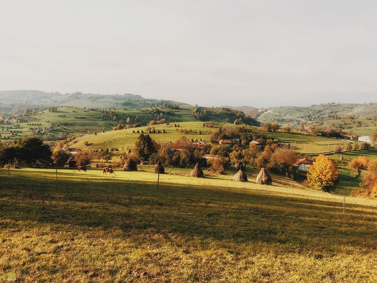 Autumn landscape in Bratca village