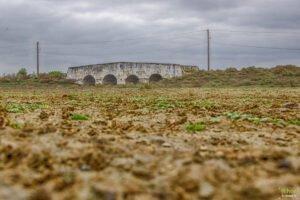 Pod din piatra