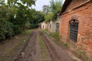 Sălacea – satul celor 1000 de pivnițe03