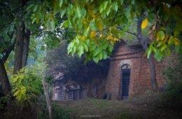 Sălacea – satul celor 1000 de pivnițe