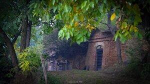 Sălacea – satul celor 1000 de pivnițe04