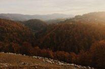 Toamna în satul Bratca