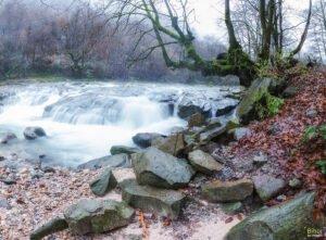 Valea Boghii