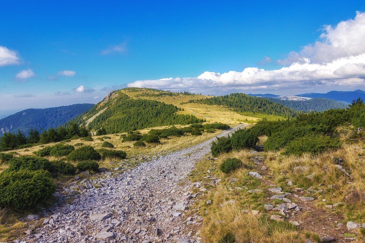 Cârligate ridge