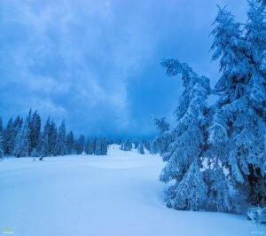 Poiana Varasoaia iarna01
