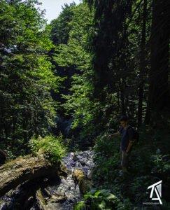 Traseul Poiana–Cascada SfTreime-Băiţa02