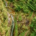 Cascada Boiulu logo.