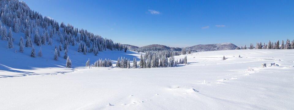 Iarna în Padiș