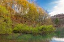 Lacul Vida la început de primăvară